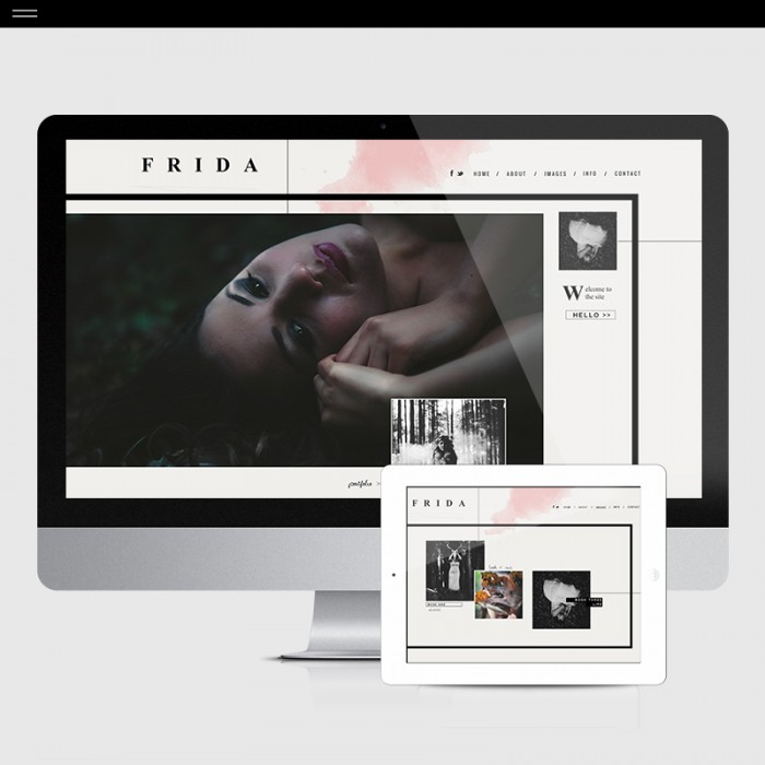 FRIDA-Product-Home
