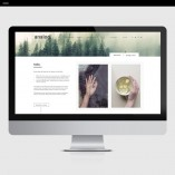 Analog-Product-Template-Showit-About