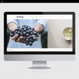 Analog-Product-Template-Showit-Gallery-2