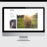 Analog-Product-Template-Showit-Gallery-3