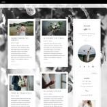 Ivy-Divi-Product-Blog